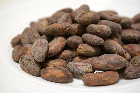 コロンビアのカカオ豆(シエラネバダ)