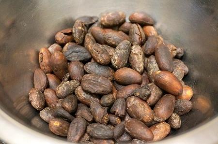 ダリケー チョコレートキット(Bean to Bar)