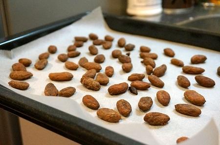 シエラネバダ産カカオ豆からチョコレートを作成