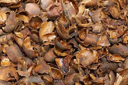 カカオ豆焙煎 殻剥き