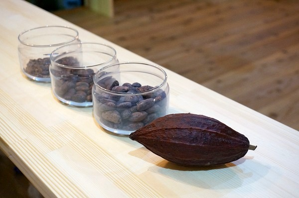 チョコレート研究所大阪新町店 カカオ豆
