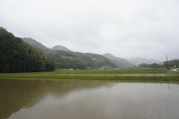 丹波篠山 カンナンファーム 養鶏場訪問
