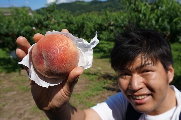 あらかわの桃かき氷